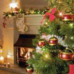 Padomi, kā iegādāties vislabāko Ziemassvētku eglīti savam mājoklim